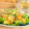 Stock Photo: Avocado and Mango Salad