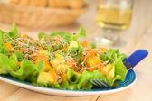 Avocado and Mango Salad — Stock Photo
