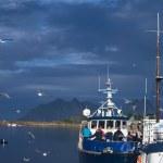 Boat in Svolvaer, Norway — Stock Photo