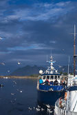Boat in Svolvaer, Norway — Stock Photo