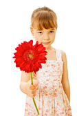 Little girl with red flower — Stock Photo