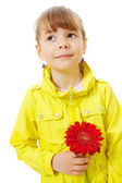 Pleading little girl wearing yellow jacket holding red flower — Stock Photo