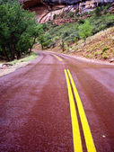 Red Road through Zion Canyon — Stock Photo