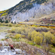 Steam Train in Rocky Mountain high country in Fall Colorado - ストック写真