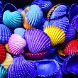 Heap of colored Shells — Stock Photo