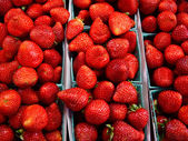 Bright Red Strawberries — Stock Photo