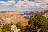 Grandeur of the Grand Canyon — Stock Photo