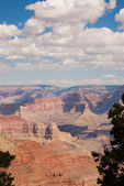 Grand canyon landschap — Stockfoto