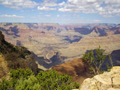 On the edge of Grand Canyon — Stock Photo