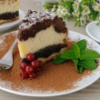 Cheese cake with poppy filling — Stock Photo