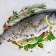 Fresh trout with lemon and spices — Stock Photo