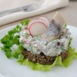 Salted herring tartare with apple and radish — Stock Photo