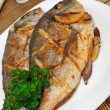 Baked fish with lemon Dorado — Stock Photo