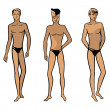 Full length front view of a standing naked man — Stock Vector