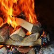 Fire in fireplace — Stock Photo #13207274