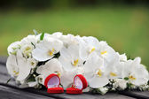 Orchids and wedding rings — Stock Photo
