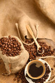 Coffee beans and cupCoffee beans and cup — Stock Photo