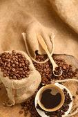 Kahve çekirdekleri, cupcoffee fasulye ve kupası — Stok fotoğraf