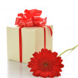 Present box with  gerbera — Stock Photo
