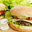 Tasty hamburger — Stock Photo #16993847