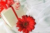 Geschenkschachtel mit gerbera — Stockfoto