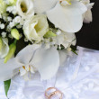 Orchids and wedding rings - Stock Photo