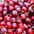 Freshly  cherries - Stock Photo