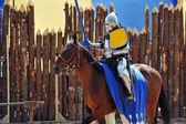 şövalye turnuva — Stok fotoğraf
