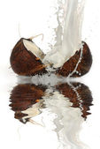 Cracked coconut — Stock Photo