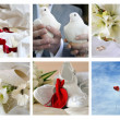 Different wedding simbols — Stok fotoğraf