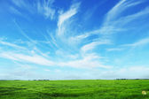 Summer landscape with sky — Stock Photo