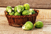 Brussel sprout — Stockfoto