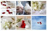 Different wedding simbols — Stock Photo