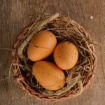 Chicken eggs — Stock Photo #21713411
