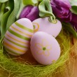 Easter eggs  and tulip - Stock Photo