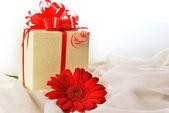 非洲菊礼物箱 — 图库照片