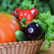 Vegetables in wicker - Stock Photo