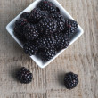 Blackberry in bowl — Stock Photo #22618127
