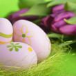Stock Photo: Easter eggs and tulip