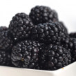 Blackberry in bowl — Stock Photo #22940112