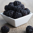Blackberry in bowl — Stock Photo #23623991