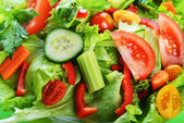 Salad with vegetable — Foto de Stock
