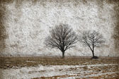 Winter landscape with trees on grunge paper — Stock Photo