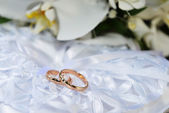 Orchids and wedding rings — Photo
