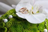 Kytice nevěsty — Stock fotografie