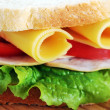 Fresh and tasty sandwich — Stock Photo #34313623