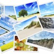Pile of nature photos — Stock Photo
