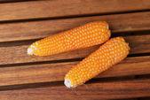 Fresca espiga de milho — Foto Stock