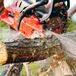 Chainsaw — Stock Photo #38476507
