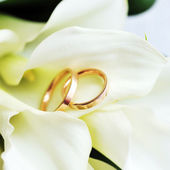 Bride bouquet and rings — Foto Stock